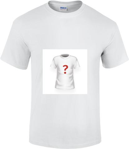 8ddd6e0bd662 Biele pánske tričko Gildan